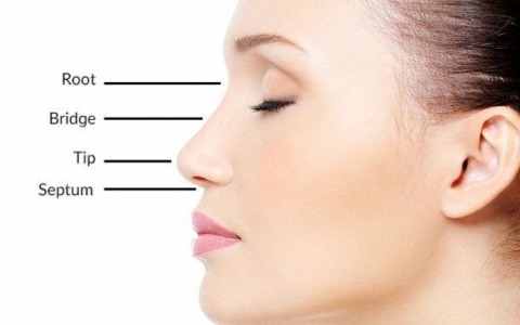 Non-Surgical Rhinoplasty (Liquid Nose Job )